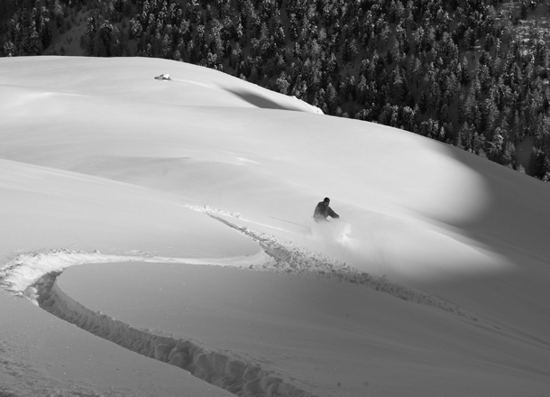Powder ski.