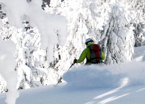 Tree skiing.